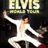 peter-storm-elvis-world-tour